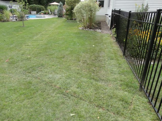 Drainage Problems? We have the Solution | Contour